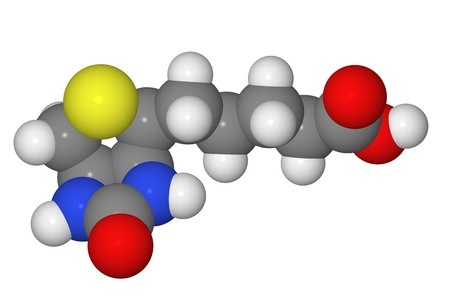 Space-filling model of biotin molecule isolated on white background