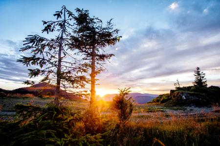 Sunset in Carpatian mountains in warm summer weather 版權商用圖片
