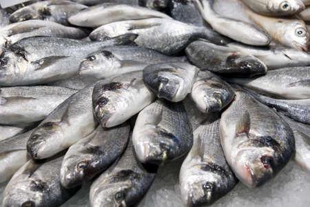 catch: Pile di pesce d'argento sul ghiaccio, mercato del pesce