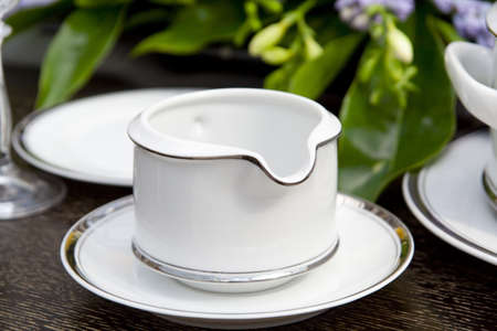 Dishware closeup with flower leaves in background photo