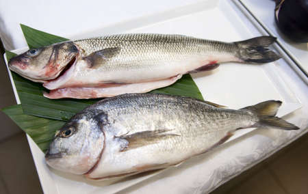 gilthead bream: Seabass and gilthead bream prepared for cooking