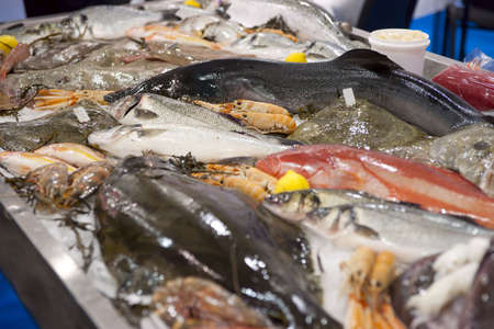 A lot of fresh saltwater fish on market display photo