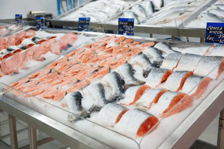 fish store: Salmon on cooled market display, tms removed from price tags Stock Photo