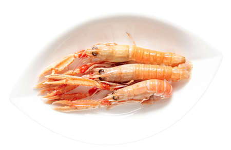 scampi: Three langoustines (scampi) in porcelain plate, isolated