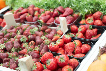 Assortment of strawberries on food market stall Stock Photo - 6910449