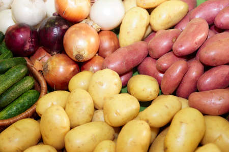 Vegetables on supermarket display, closeup photo