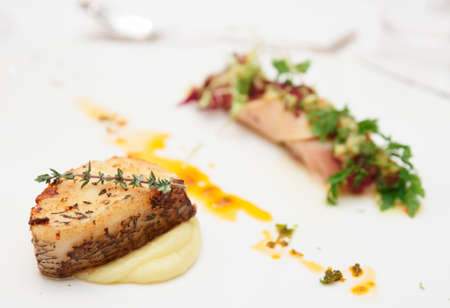 mediterranean cuisine: Seabass and squid, haute cuisine dish on restaurant plate Stock Photo
