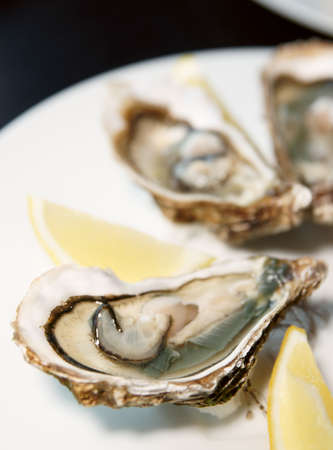 Fresh open oysters on plate with lemon, selective focus photo