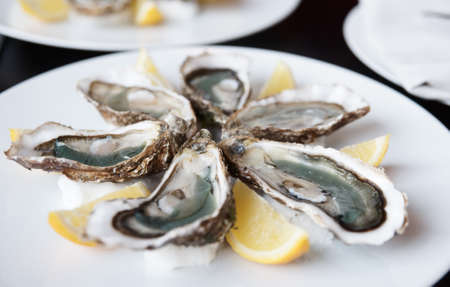 Fresh open oysters on plate with lemon, selective focus Stock Photo - 8883452