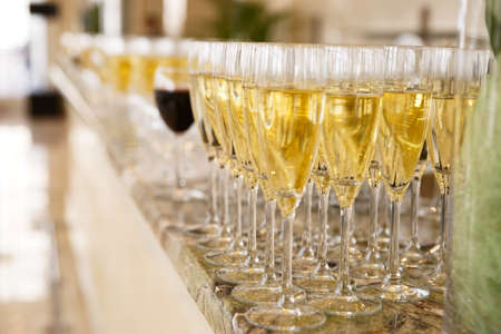 Rows of champagne flutes on bar counter, shallow focus photo