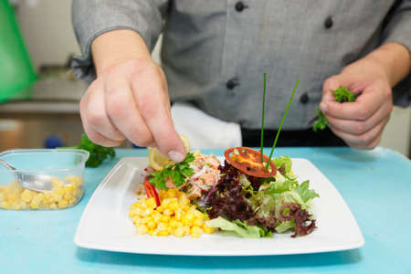Chef is decorating appetizer on commercial kitchen Stock Photo - 10025115
