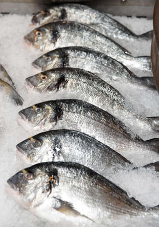 cooled: Seabass on cooled market display in fish shop