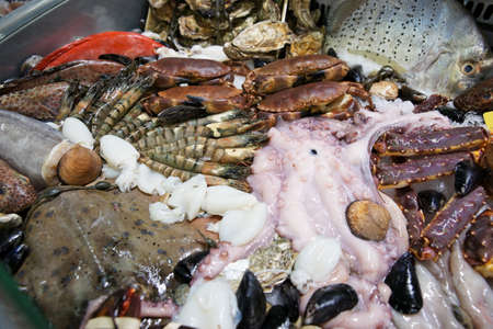 Great variety of fish and seafood on fish market display photo