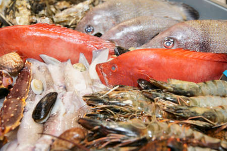 Great variety of fish and seafood on fish market display Stock Photo - 10905400