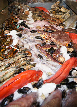 Great variety of fish and seafood on fish market display Stock Photo - 10905423