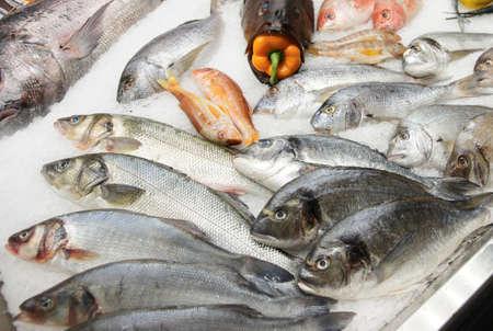 cod fish: Great variety of fish on fish market ice display