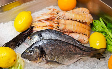 Seabass and scampi on cooled market display  photo