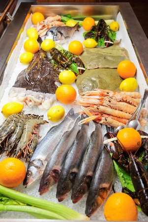 cooled: Great variety of fish and seafood in cooled market stall