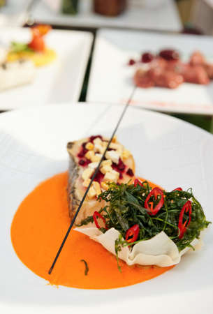 mediterranean cuisine: Seabass haute cuisine dish with herbs and vegetable puree