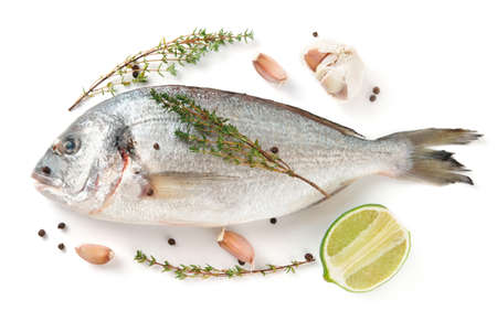 gilthead bream: Gilt-head bream with herbs and spices isolated on white background Stock Photo