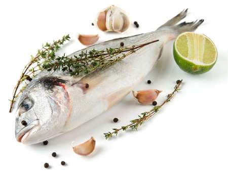 gilthead bream: Gilt-head bream with herbs and spices on white surface