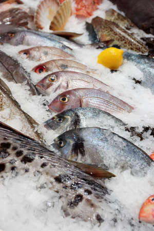 Great amount of fresh fish on the market stall photo