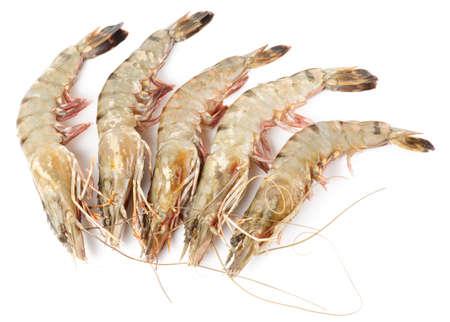 Raw shrimps isolated on white background photo