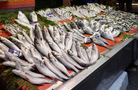Fishes in Street fish market in Istanbul, Turkey photo