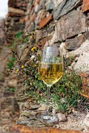 mosel: Full glass of Riesling wine on slate rock, Moselle winemaking region, Germany