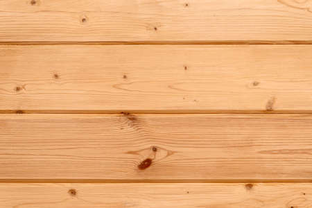 pinetree: Pine-tree wall lining, natural background