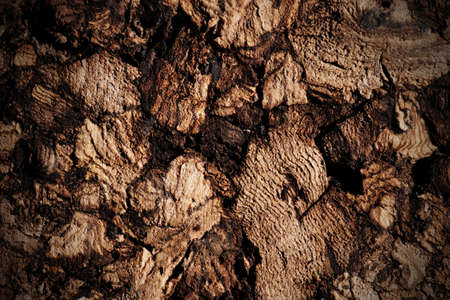 vignetting: Natural cork texture, macro shot, toned, vignetting added