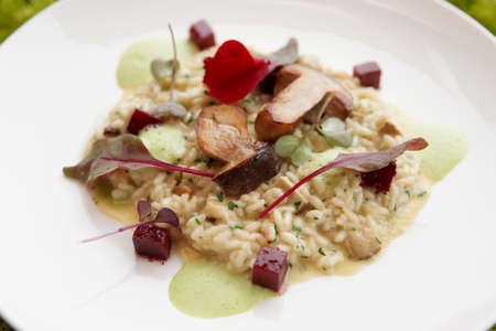 italian cuisine: Risotto with fried porcini mushrooms on white plate Stock Photo