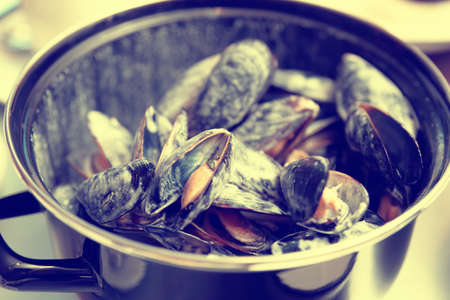 steel. milk: Mussels cooked with creamy sauce and served in metal pot, shallow focus, toned image Stock Photo