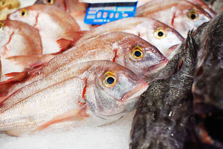 Sea bream and other fish on ice, market display, toned
