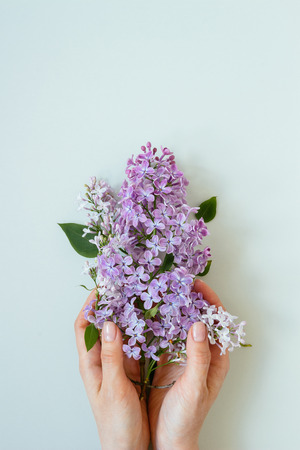 Flowers composition. Tender background. Beautiful fresh lilac flowers on gray background.