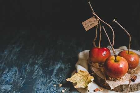 Autumn background with copy space. Traditional caramel apples with brunch sticks. Hello autumn.