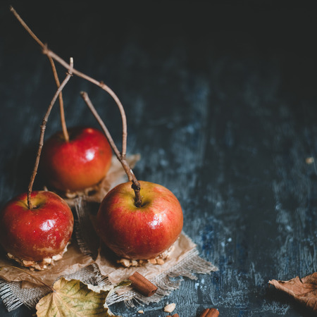 Autumn background with copy space. Traditional caramel apples with twig sticks. Square crop.