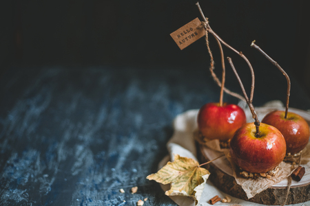 Autumn background with copy space. Old fashioned caramel apples with twig sticks. Hello autumn.