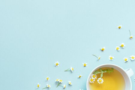 chamomile tea with chamomile flowers on blue background with copy space.