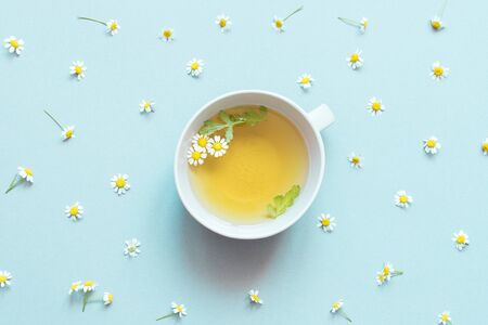 A cup of herbal chamomile tea with chamomile flowers on blue background 스톡 콘텐츠