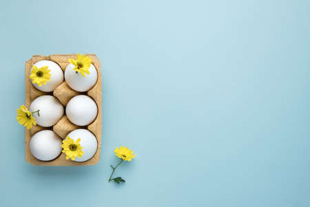 Happy easter. Easter eggs with spring yellow flowers on blue background. Copy space.