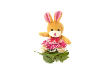 A toy rabbit, isolated on white background Stock Photo - 13389509