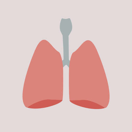 billet: Vector illustration. Human organs - lungs on an isolated background Illustration