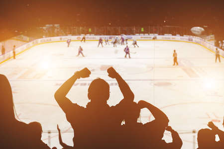 fanáticos en el partido de hockey vista posterior Foto de archivo