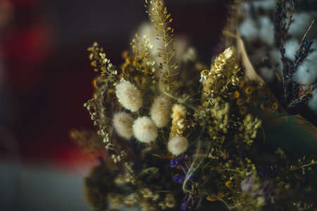 old herbarium bouquet close up on table