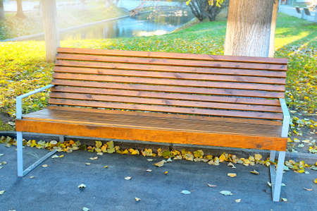 Wooden bench in the autumn park on a background of green grass with yellow leaves and pond. Selectively tinted image