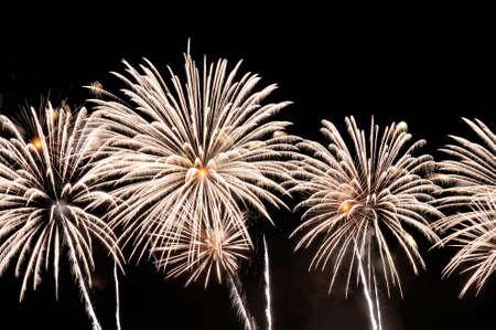 White fireworks display on dark sky background.