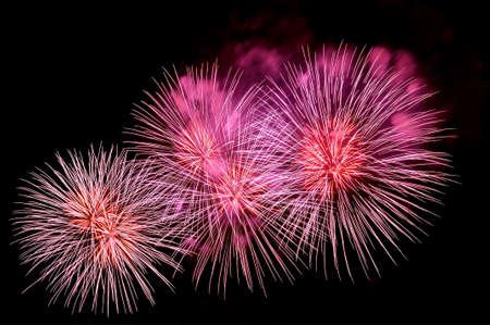 Outbreaks of festive pink salute fireworks on the black sky