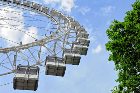 Ferris wheel against a blue sky surrounded by tree branches with green foliage. Bottom view.