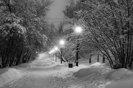 Winter path in the park brought by snow lit with decorative lamps. Toned image Standard-Bild